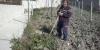cam03080-35442653912-o8F248A8E-3ABD-E2A1-72C3-0135AE0AAF28.jpg