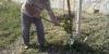 cam01963-34775710643-o4409DBCF-9E67-BA1E-374A-DC2FDFCCF1B4.jpg