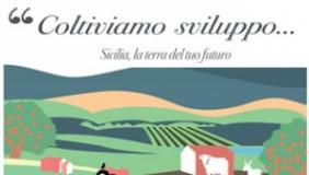 Agricoltura in Sicilia